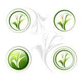 Calla Lily Flower Icon Set Stock Afbeelding