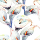 Calla Lily flowers, watercolor illustration. Seamless pattern Royalty Free Stock Image