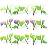 Calla Lily Icon Set Royalty Free Stock Images