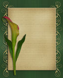 Calla Lily Invitation card template Stock Photography