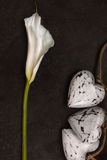 Calla lily with wooden hearts decoration on dark background, top Royalty Free Stock Photography