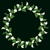 Calla lily wreath. Floral wreath with bunches of calla lily on black Stock Photography