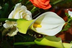 Calla och bukett av blommor Fotografering för Bildbyråer