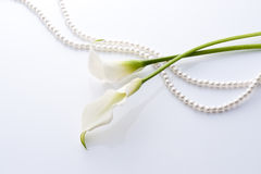 Calla and pearls Royalty Free Stock Photo