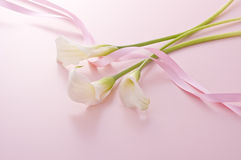 Calla and pink ribbon Stock Photography