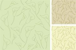 Calla seamless outline backgrounds. Three seamless outline backgrounds in pastel shades with calla flowers Royalty Free Stock Image