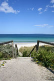 Callala Beach, Australia. Pathway to Callala Beach at Jervis Bay, Australia Royalty Free Stock Image
