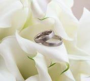 Callas avec des anneaux Photographie stock libre de droits