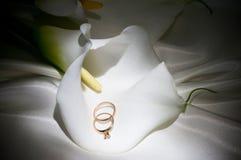 Callas con gli anelli dorati di cerimonia nuziale immagini stock libere da diritti