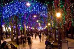 Calle brillante en la noche Foto de archivo libre de regalías
