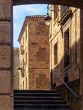 Calle Cien Doncellas - Léon Photos libres de droits
