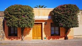 Calle Colonia Del Sacramento, Uruguay imagen de archivo libre de regalías