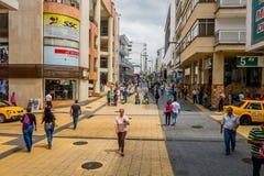 Calle comercial importante una de la ciudad Fotografía de archivo libre de regalías