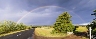 Calle con el viñedo y arco iris en Tasmania, Australia imagenes de archivo