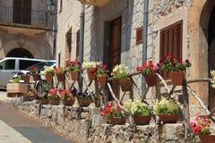 Calle con las flores Fotos de archivo libres de regalías