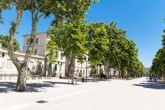 Calle con los árboles verdes en Nimes, Francia Foto de archivo