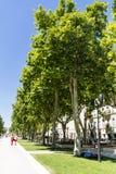 Calle con los árboles verdes en Nimes, Francia Foto de archivo libre de regalías