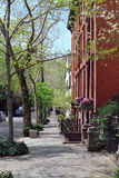 Calle de Brooklyn Imagen de archivo