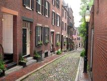 Calle de la bellota Fotografía de archivo libre de regalías