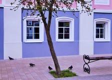 Calle de la ciudad antigua de Yelets, Rusia Foto de archivo