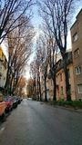Calle de la ciudad de Novi Sad después de la lluvia Fotos de archivo