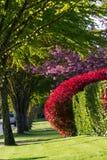 Calle de la primavera Fotografía de archivo
