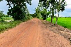 Calle de la suciedad cerca el campo de maíz del arroz Fotos de archivo libres de regalías