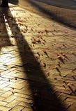 Calle de la tarde Foto de archivo libre de regalías