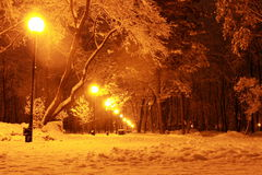 Calle de la tarde del invierno en la nieve Fotos de archivo libres de regalías