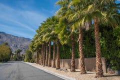Calle de la vecindad en Palm Springs foto de archivo