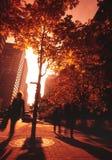 Calle de Montréal. foto de archivo libre de regalías