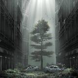 Calle de niebla en la ciudad abandonada Foto de archivo libre de regalías