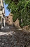 Calle de Toledo Fotografía de archivo