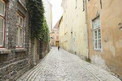 Calle del adoquín - Tallinn - Estonia Foto de archivo libre de regalías
