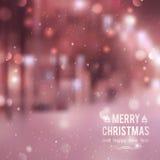 Calle del invierno Imagen de archivo libre de regalías
