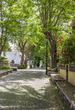 Calle del jardín Foto de archivo libre de regalías