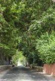 Calle del jardín Imagen de archivo
