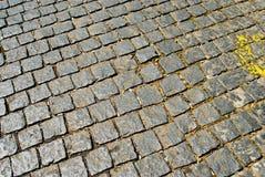 Calle del pavimento Fotografía de archivo