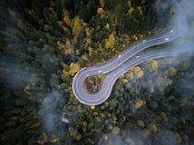 Calle desde arriba del canal un bosque brumoso en el otoño, el vuelo de la visión aérea a través de las nubes con niebla y los ár Foto de archivo
