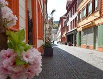 Calle en 'Heidelberg 'con las flores y los guijarros fotos de archivo libres de regalías