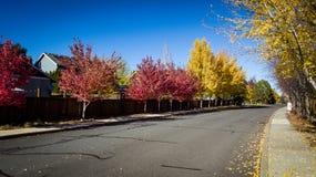 Calle en colores de la caída imagen de archivo libre de regalías