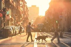 Calle en el centro de ciudad de Burdeos, Francia foto de archivo