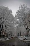 Calle en invierno Foto de archivo libre de regalías