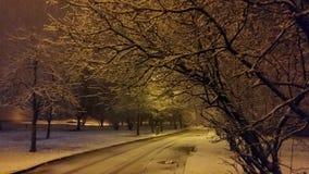 Calle en invierno Fotografía de archivo libre de regalías