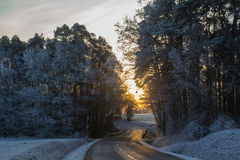 Calle en invierno fotografía de archivo