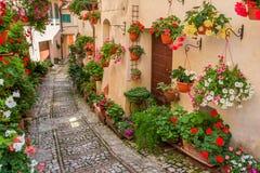Calle en pequeña ciudad en Italia en día soleado Fotos de archivo