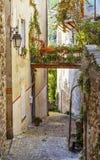 Calle estrecha con las flores en la ciudad vieja Coaraze en Francia Foto de archivo libre de regalías