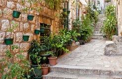 Calle estrecha con verdor en crisoles de flor Foto de archivo