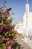 Calle estrecha en el pueblo de Oia, Santorini Grecia Foto de archivo libre de regalías