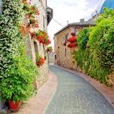 Calle flor-alineada pintoresca foto de archivo